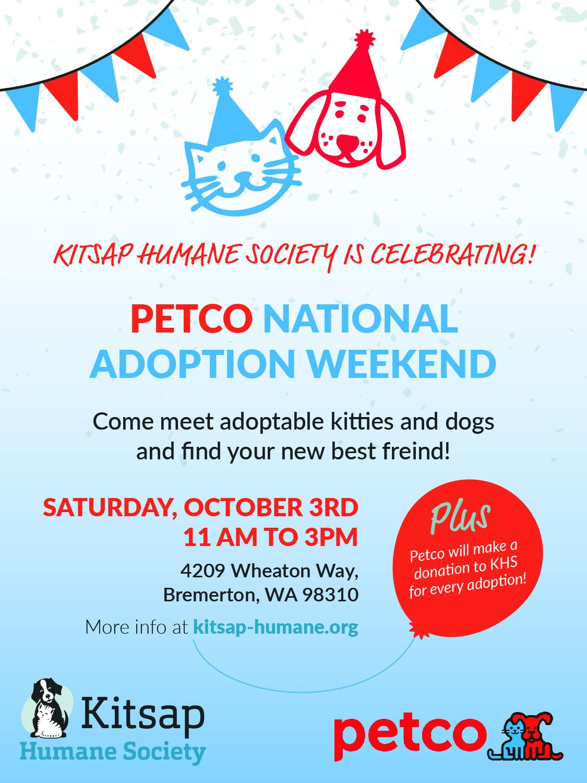 Cat Adoption San Diego Petco