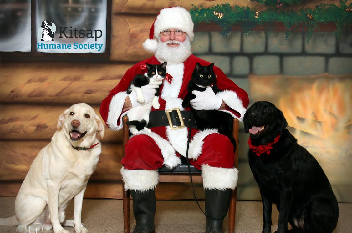 Santa-blog