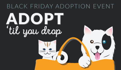 adopt-til-you-drop-web-event