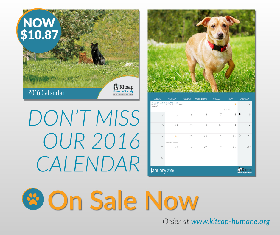 FB-Promotional-Photo-2016calendar-reduced-price