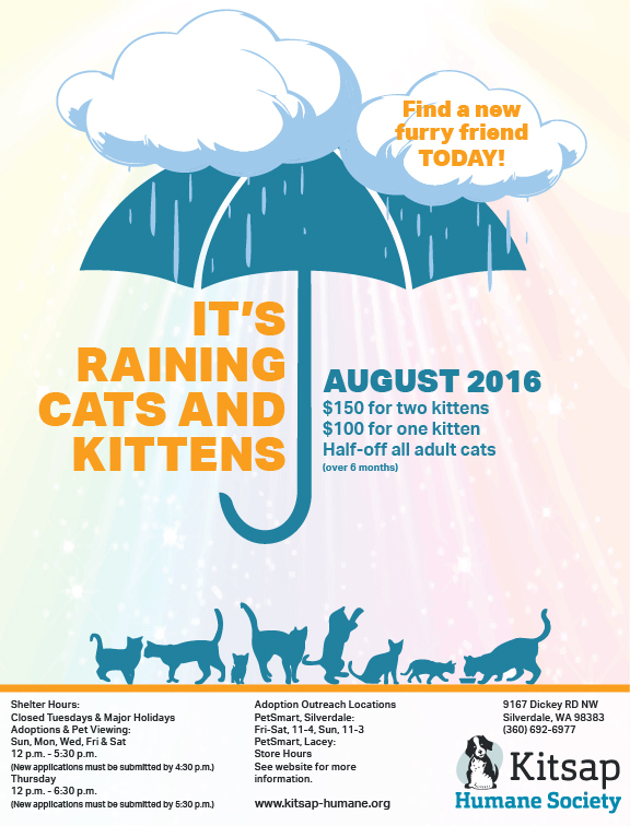 Raining-Cats-and-Kittens-Flyer