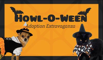 featured-web-event-howloween